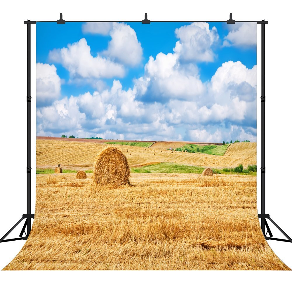 Capisco Rural Farm Field Wheat Hay Bales Clouds Blue Sky Photography Backgrounds For Photo Studio Vinyl Custom Backdrops Props