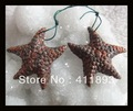 Carved Birds'Eye Jasper Starfish Earring,42x41x7mm,15.65g