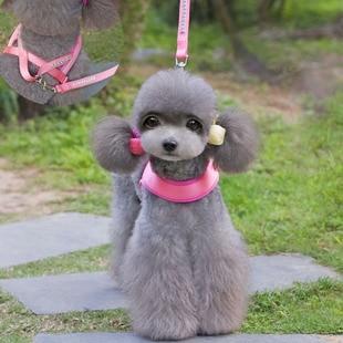 golden panda nylon pet dog leash suit new triangular pet chest