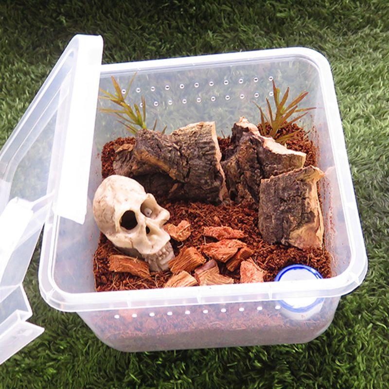 Reptile Terrarium Feeder Breeding Box Tortoise Spider Lizard Beetle Insect House