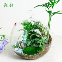 MOST FREE SHIPPING Hanging Glass Planter Vase/ Iron Frame Rack Craft Terrarium Container HOME DECOR WEDDING FUNNY Gift