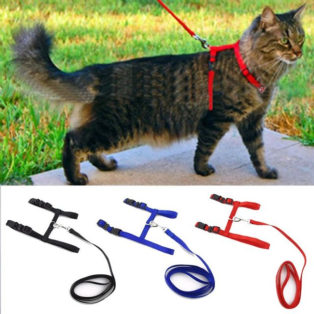 Hot Sale 3 Colors Nylon Products For Pet Cat Harness And Leash Adjustable Pet Traction Harness Belt Cat Kitten Halter Collar