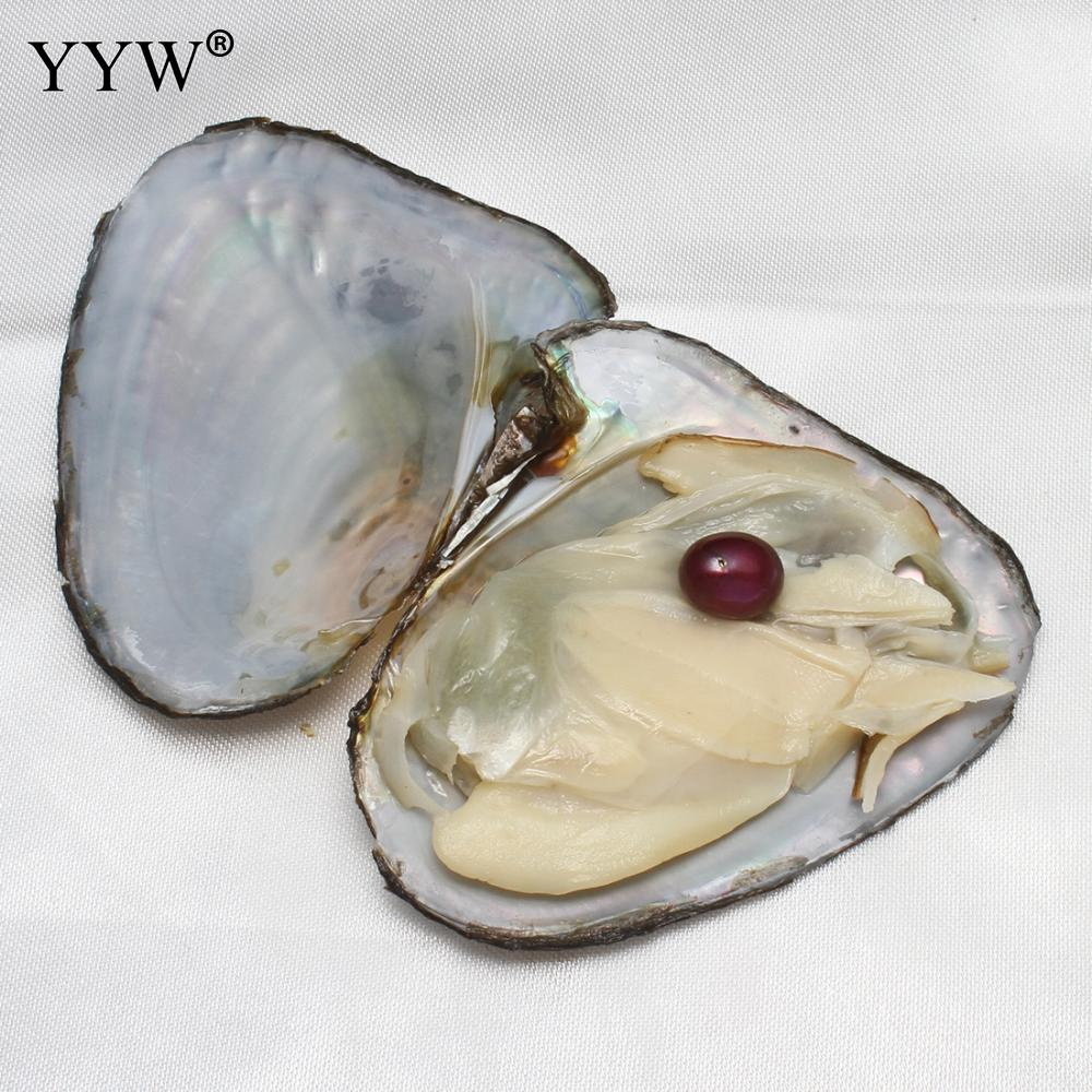 Mussel Shell Freshwater oyster with pearls mixed colors Rice 9-9.5mm with Vacuum Pack Inside One pearl in one oyster