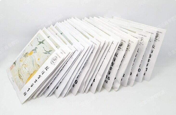 1-21 Stringhe Cetra full set 21 pz Stringhe Guzheng Cinese Strumenti Musicali Accessori