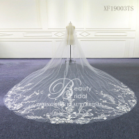 Wedding Accessories Tulle chapel Wedding Veil Lace Edge Bridal Veil with Comb veu de noiva XF19003TS