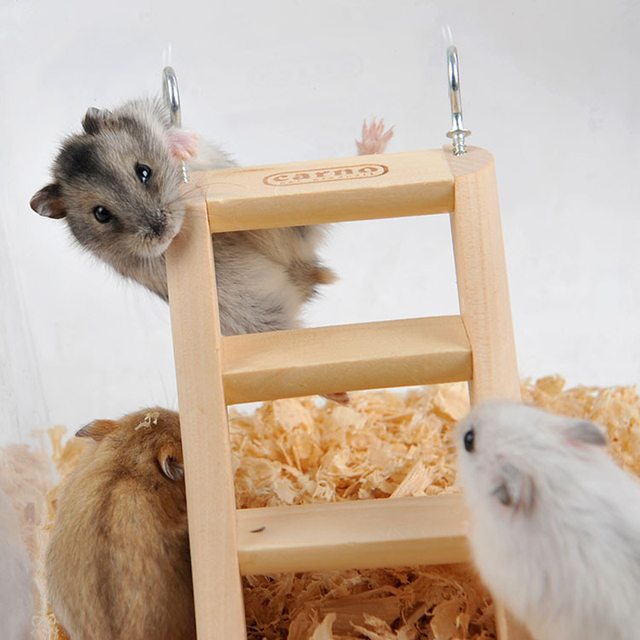 1pc 15*7*2cm Hamster - Rabbit Hanging Toy Ladder with Hook - Fun For Rats - Mice - Gerbils  2