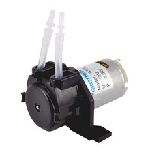 Hot 12V 24V DC Dosing Pump Peristaltic Dosing Head for Aquarium Lab Analytical Water DIY New Arrival Pompe doseuse peristaltique(China)