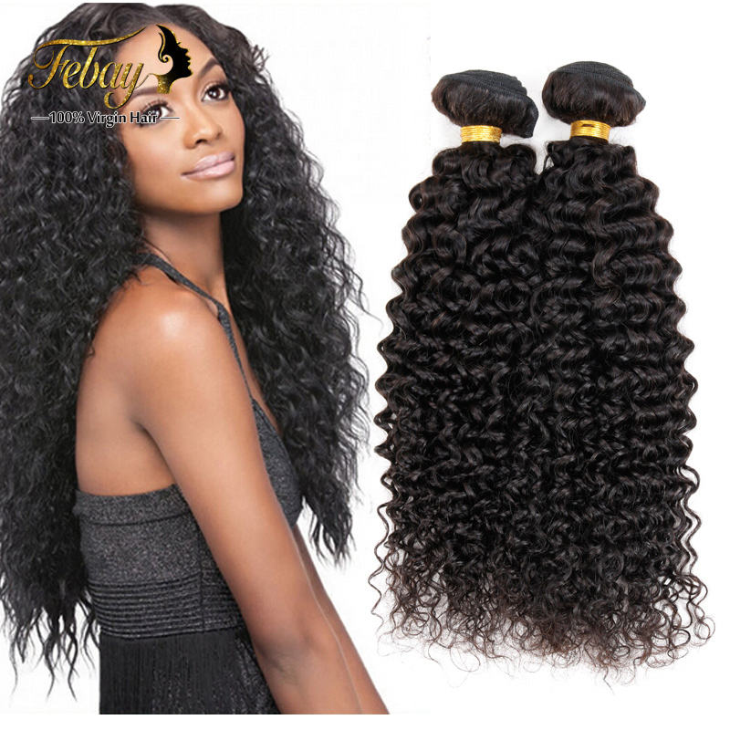 Brazilian Curly Virgin Hair Bundles 7a Brazillian Human