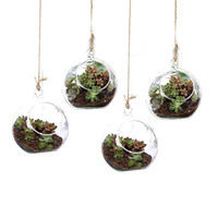T4U 4.75 Glass Hanging Plant Terrariums Tealight Holder Globe Air Plant Pot Container Planter Succulent Cactus Fern Pack of 4