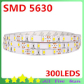 5630 LED Strip 5M/300LEDs 5630 SMD Non-waterproof LED Ribbon Warm White/Cool White Led Strip Light FREE SHIPPING