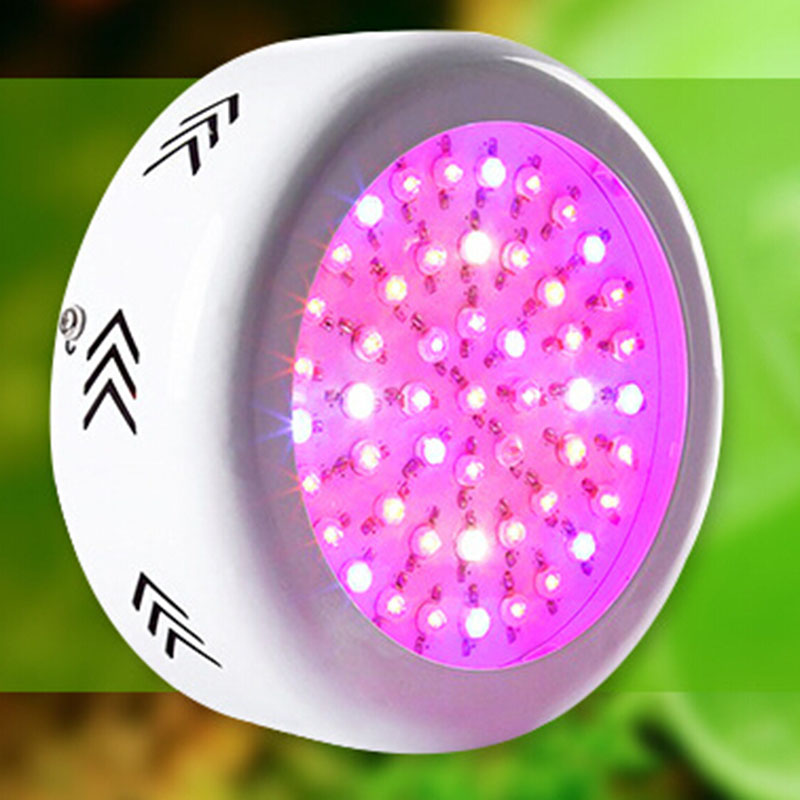 200W LED Grow Light 72X3W LEDs Full Spectrum Grow Box 410-730nm For Indoor Plants and Flower with Very High Yield P20 300w full spectrum high yield led grow light best for hydroponics indoor plants grow and flower