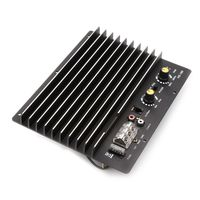 1 Pc DC 12V 1200W 100A Auto Car Audio Amplifier Board HS 180 High Power Subwoofer Circuit Module For 8/10 inch Speaker