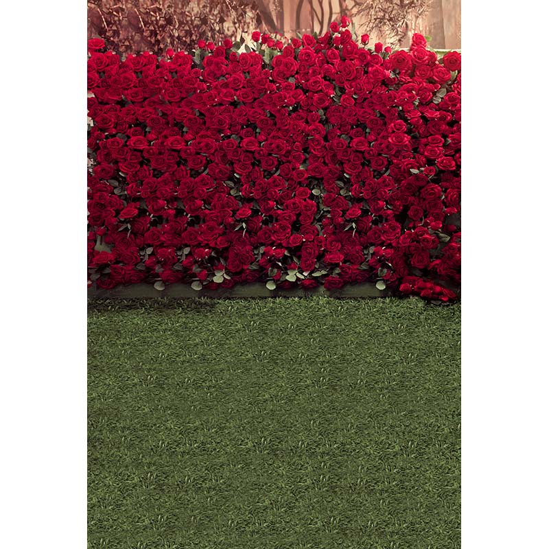 Customize vinyl cloth print 3 D red roses wall photo studio backgrounds for wedding portrait photography backdrops props CM-5837