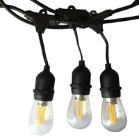 Tanbaby IP65 Outdoor LED String Light 10M Gauge Black Cable with 10 4W Edison Bulbs Perfect Decoration For Patio Garden Party