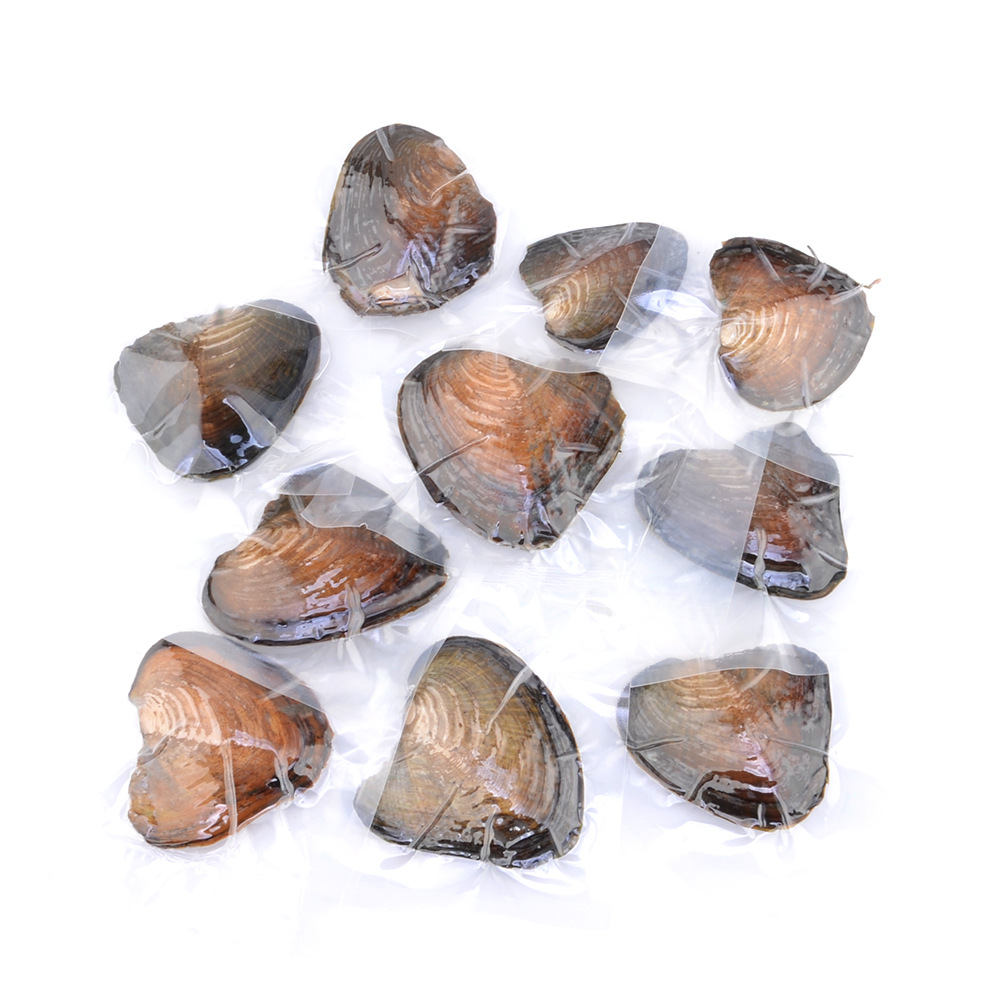Freshwater Vacuum-pack Oyster Wish Pearls, Pearl Mussel Shell with Pearl Inside  FPPJ