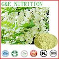 Top Quality 100% Natural Quercetin Plant Extract/ Quercetin 800g