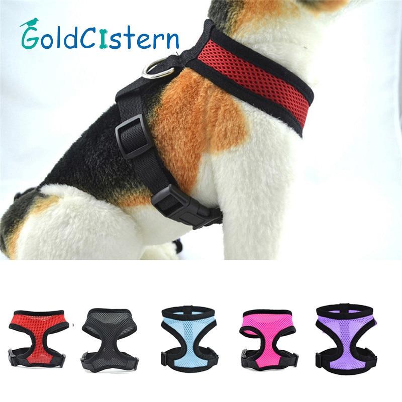 Stylish Cat stylish cat collar reviews - online shopping stylish cat collar