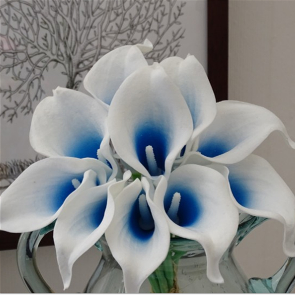 popular blue calla lilies buy cheap blue calla lilies lots. Black Bedroom Furniture Sets. Home Design Ideas