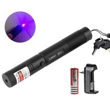 Синий фиолетовый лазерный указатель ручка 301 высокое Мощность 405NM одной точке фиолетовый Lazer + 18650 Батарея + Зарядное устройство + безопасный ключ
