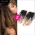 9A Ombre Brazilian Hair With Closure 4x4 Ombre Bundles With Closure 1B/30 Brazilian Kinky Curly Virgin Hair With Closure