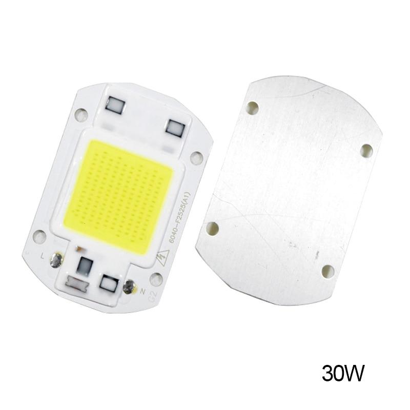 20W 30W 50W LED Chip 110V 221V LED COB Bulb Chip Input IP65 Smart IC Fit For DIY LED Flood Light