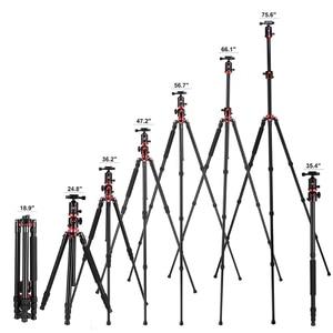 Image 5 - ZOMEI Портативный штатив для камеры, профессиональный алюминиевый монопод, 4 секции, Трипод с шаровой головкой 360 градусов для DV DSLR