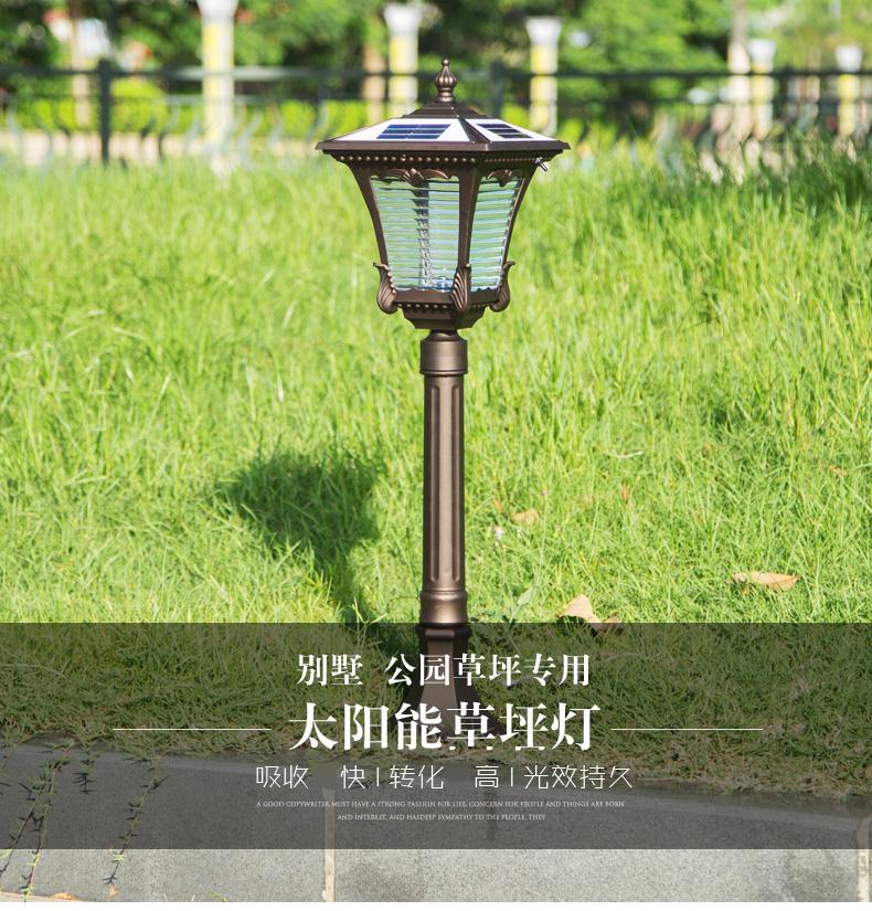 solar lawn light (1)