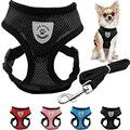 Malha respirável Small Dog Pet Harness e Set Leash Cachorrinho Vest Rosa Azul Vermelho Preto Para Chihuahua