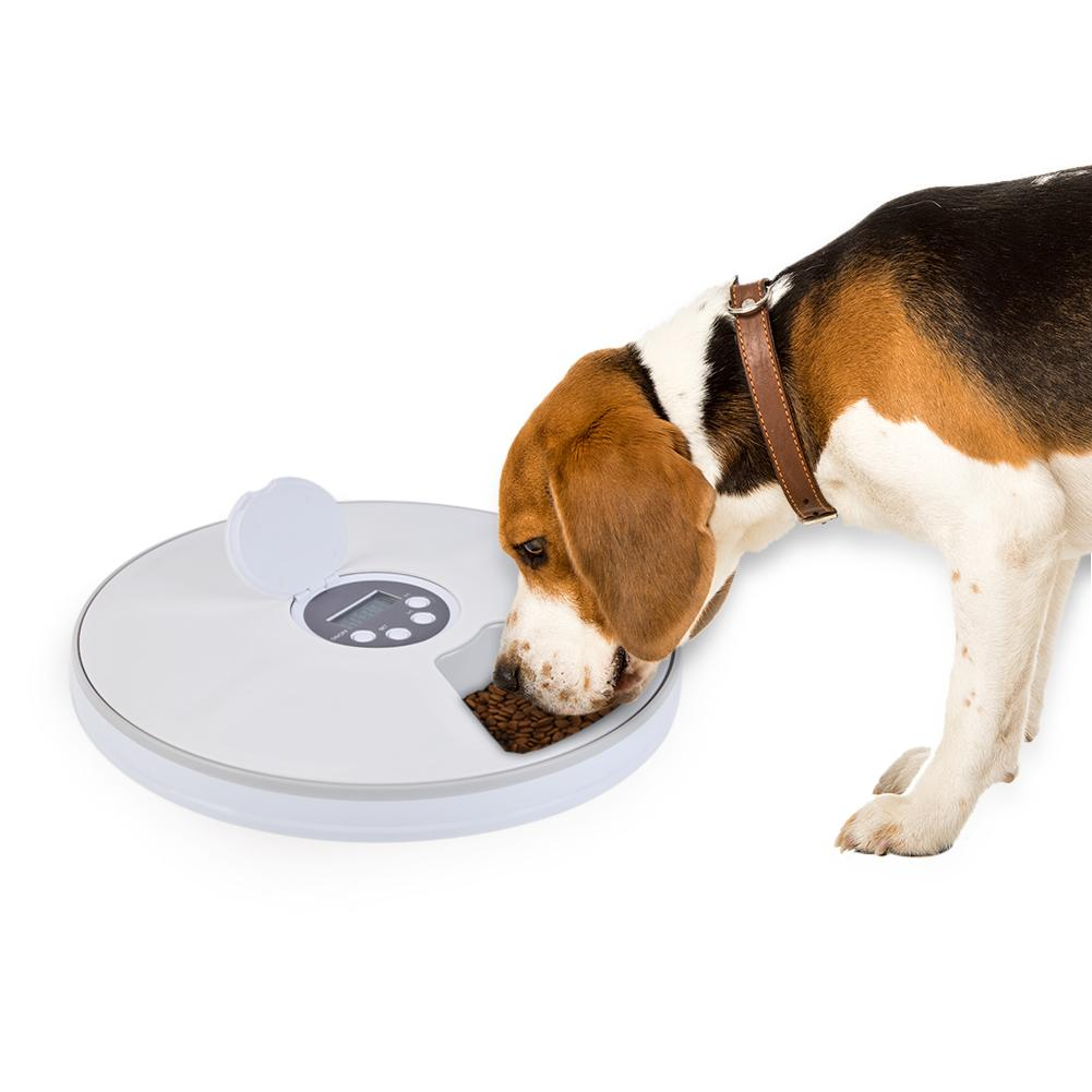 Pet Dog Cat Feeding Dish Bowl Dog Timing Feeder 6 Grid Electric Feeder Timing Cat And Dog Unmanned Feeding MachinePet Dog Cat Feeding Dish Bowl Dog Timing Feeder 6 Grid Electric Feeder Timing Cat And Dog Unmanned Feeding Machine