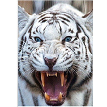 DIY diamond painting full round tiger head dimaond drill animal embroidery mosaic plein