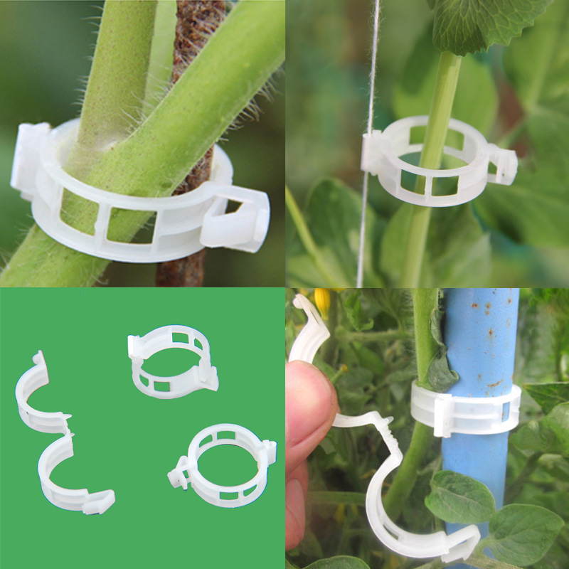 50pcs Tomato Clips Trellis Garden Plant Flower Vegetable Binder Twine Plant Support Greenhouse Clip Supplies