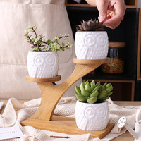 creative succulent ceramic owl planter with treetop bamboo frame combination potted flowerpot office desk decoration home