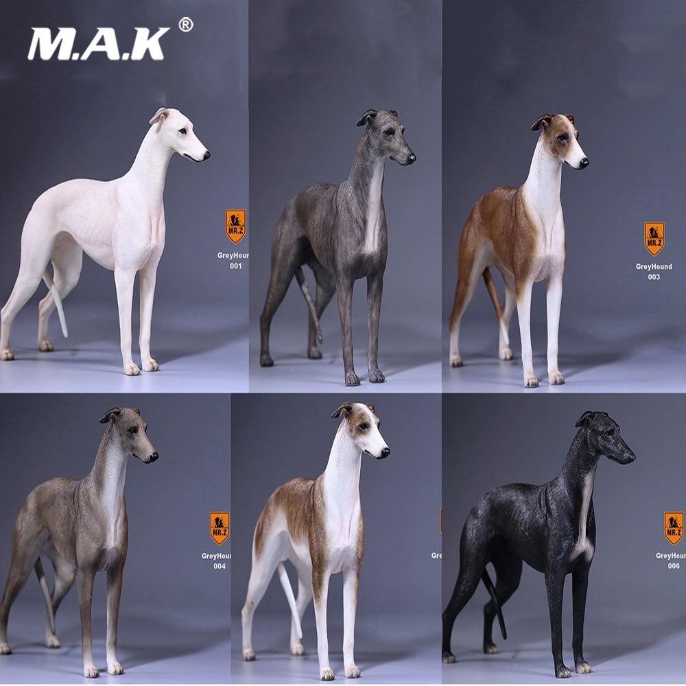Mr.Z 14th Bomb 1/6 Scale Greyhound Figurine Dog Statue Lifelike Animal Model for 12