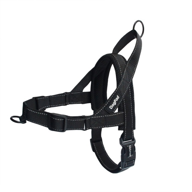 Best No Pull Dog Harnesses: Large & Small Dogs