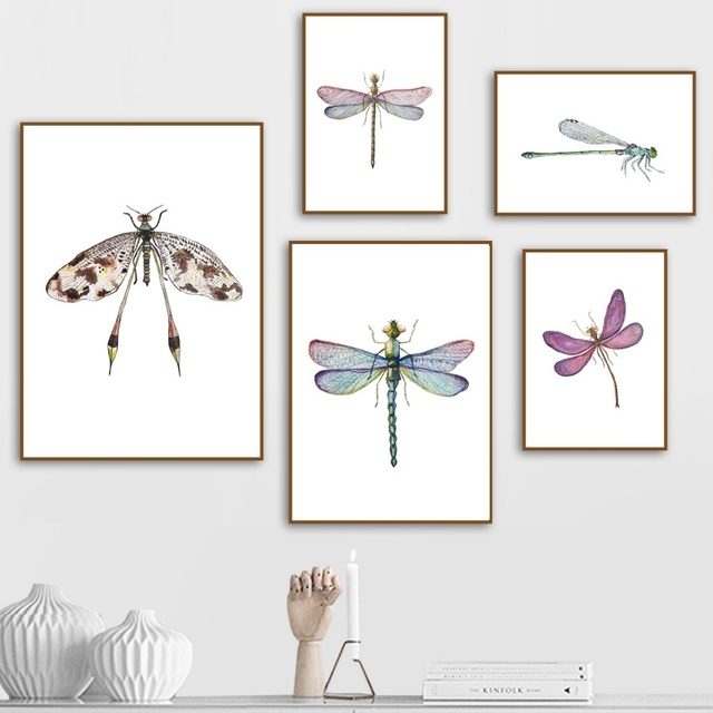 Colorful Dragonfly Wall Art  1