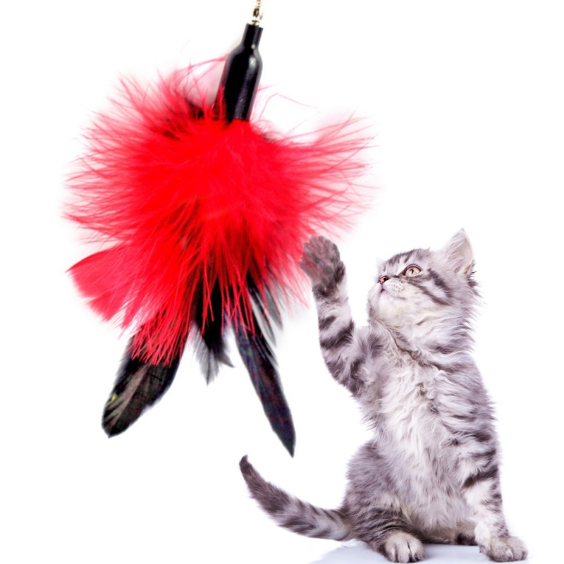 1 Set Lovely Cat Teaser Wand Natural Feather Cat Toy on a 35-Inch Wand with 3 Furry Feathers Cats Supplies