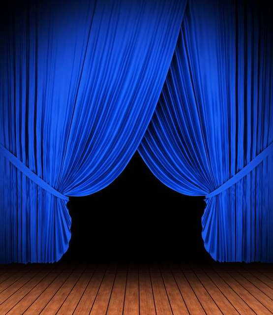 Blue Curtains Stage Wood Floor Backdrop Vinyl Cloth High Quality