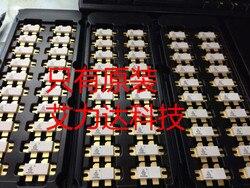 FreeShipping BLF278C specjalizująca się w urządzeniach wysokiej częstotliwości