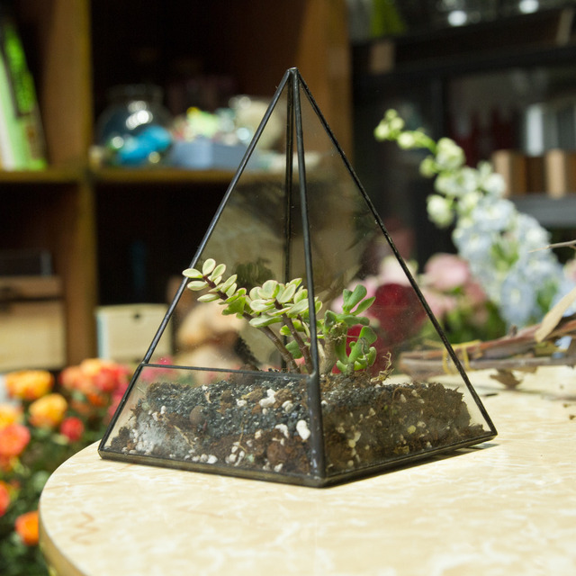 19cm Modern Tabletop Geometric Pyramid Glass Terrarium Window Sill  Succulent Flowerpot Plant Container Planter Bonsai Flower
