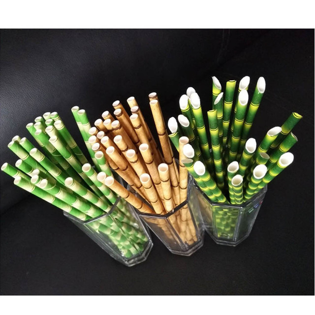 Bamboo Patterned Paper Straws 25 Pcs Set