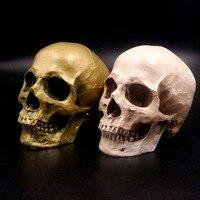 Human Skull Lifesize 1 1 Resin Replica Medical Model Aquarium Ornament Fish Tank Waterscape Cave Halloween