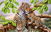5D DIY Diamond Painting Cross Stitch Leopard Resin Needlework Home Decor Full Rhinestone Mosaic Embroidery Icon
