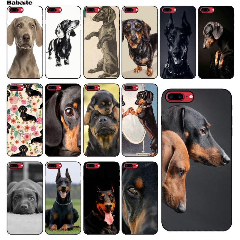 d9b78928d Babaite Dachshund Silhouette Dog Painted Soft Shell Phone Case for Apple  iPhone 5
