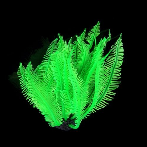 fish tank aquarium plants aquarium Decoration seaweed green