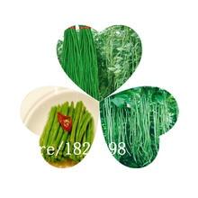 Золото зеленые бобы семена, соединенные Штаты импортировали коровьего гороха семена, семена овощей, импортируемых, годовой посадки-100 семян/мешок
