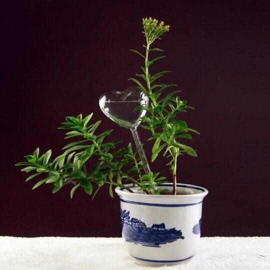 Стеклянные растения, цветы, кормушка для воды, самополивающаяся птица, дизайн, растение, водонагреватель, 6 видов
