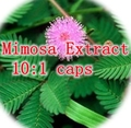 1pack Mimosa Extract 10:1 caps 500mg x 300pcs free shipping