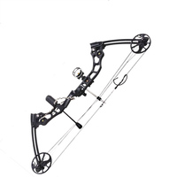 35 70 lbs Powerful Compound Bow Aluminum Alloy Archery Bow Arrow for Outdoor Hunting Shooting