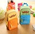 Бесплатная доставка  креативный дизайн  сумка-карандаш для студентов  креативный стиль  чехол-карандаш с усами  натуральная парусиновая сум...