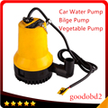 12V oil  BL2512N Bilge Pump 3m3/h Small DC Submersible Water Pump for Fountain Garden Irrigation Swimming Pool Cleaning Farming